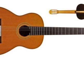 Salvador Cortez VNP Custom